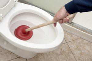 Усунути засмічення в туалеті